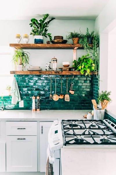 plants in solid oak kitchen
