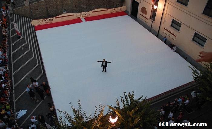 worlds-biggest-bed