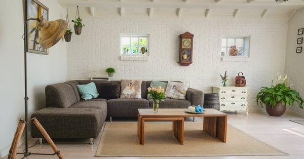 plant interior design fresh trends for 2020